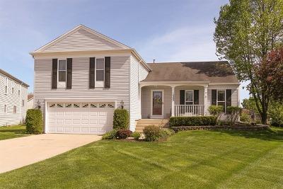 Buffalo Grove Single Family Home New: 1303 Gail Drive