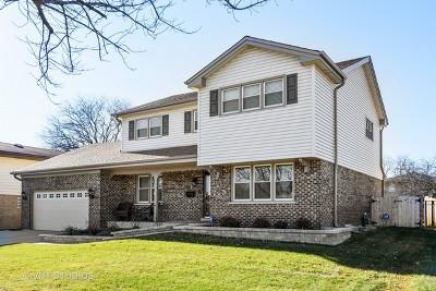 Elmhurst Single Family Home New: 738 South Stuart Court