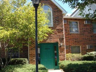 Lake In The Hills Condo/Townhouse For Sale: 1341 Cunat Court #2A