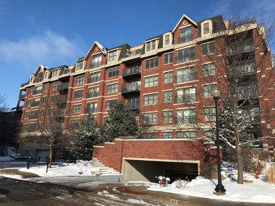 Wheaton Condo/Townhouse New: 255 East Liberty Drive #203-2
