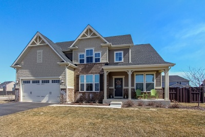 Gilberts Single Family Home For Sale: 879 Blue Aster Parkway