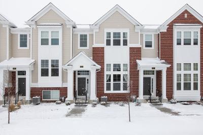 Aurora Single Family Home New: 873 Lewisburg Lane