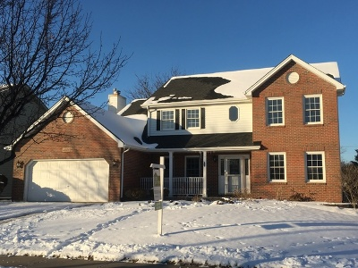 Naperville Single Family Home New: 4020 Jersey Court
