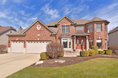 Naperville Single Family Home For Sale: 3839 Junebreeze Lane