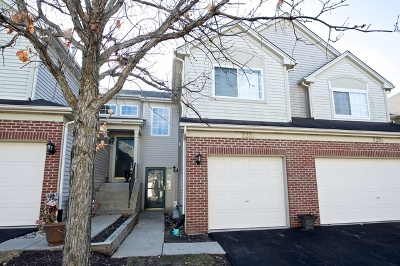 South Elgin Condo/Townhouse For Sale: 233 Nicole Drive #C