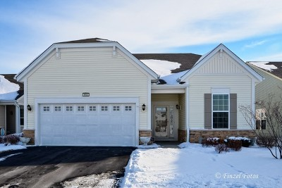 Pingree Grove Single Family Home For Sale: 913 Fairmont Road