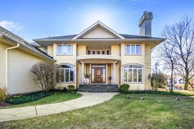 Hinsdale Single Family Home New: 801 South Monroe Street