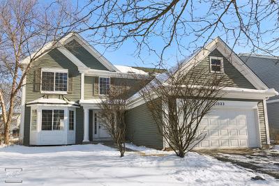 Aurora Single Family Home New: 1523 Burr Oak Circle