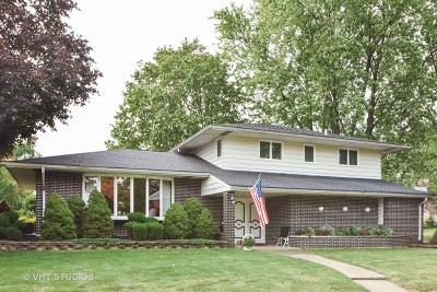 Tinley Park Single Family Home For Sale: 17200 South 69 Avenue South