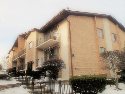 Chicago Ridge  Condo/Townhouse New: 9820 Nashville Avenue #4