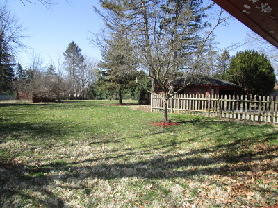 Woodstock Single Family Home New: 555 West Jackson Street