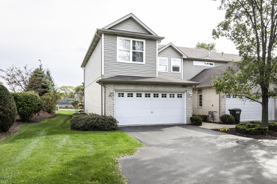 Tinley Park Condo/Townhouse New: 6930 Century Court