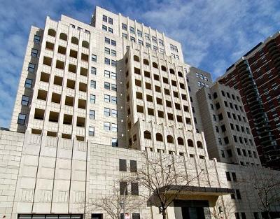Cook County Condo/Townhouse New: 1155 North Dearborn Street #603