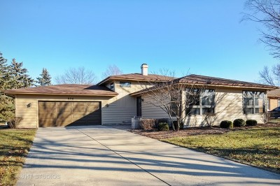 Hobson West Single Family Home For Sale: 856 Naperville Plainfield Road