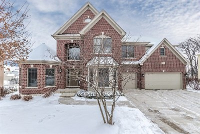 Elgin Single Family Home For Sale: 3577 Wetlands Drive