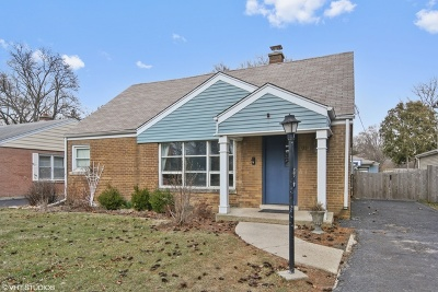 Western Springs Single Family Home For Sale: 4319 Western Avenue