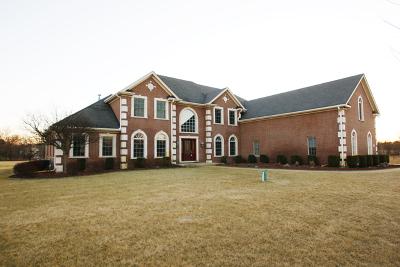 Lake Villa, Lindenhurst Single Family Home For Sale: 23925 West Reindeer Trail