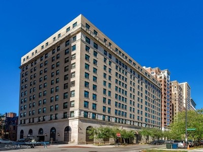 Chicago Condo/Townhouse For Sale: 2100 North Lincoln Park West Avenue #9DS