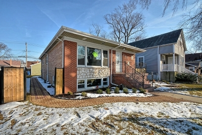 Evergreen Park  Single Family Home New: 9331 South Troy Avenue