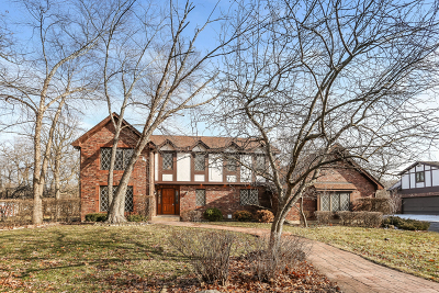 Bensenville Single Family Home For Sale: 4n141 Route 83