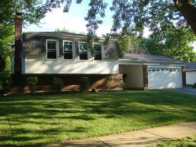 Bolingbrook Single Family Home For Sale: 529 Forest Way