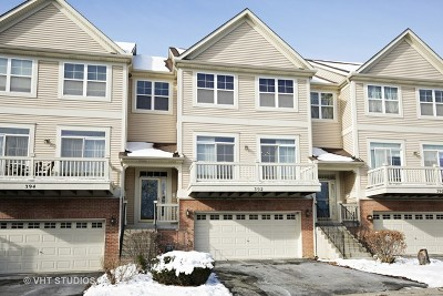 South Elgin Condo/Townhouse For Sale: 392 Hickory Lane