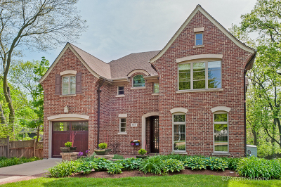 Glen Ellyn Single Family Home For Sale: 557 North Park Boulevard