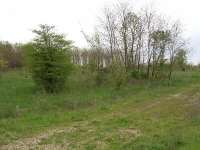 Elburn Residential Lots & Land For Sale: 0s512 Autumn Woods Lane