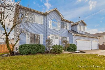 Bolingbrook Single Family Home For Sale: 1449 Mesa Drive
