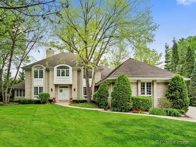 Hinsdale Single Family Home For Sale: 832 The Pines