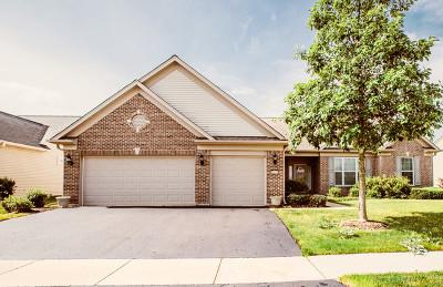 Elgin Single Family Home For Sale: 2471 Vista Trail