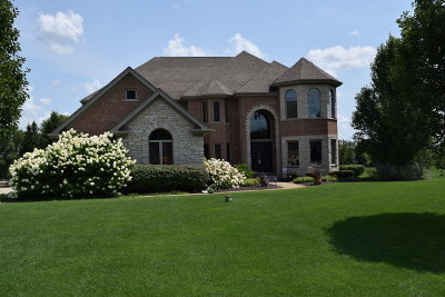 Homer Glen Single Family Home For Sale: 17917 South Foxhound Lane