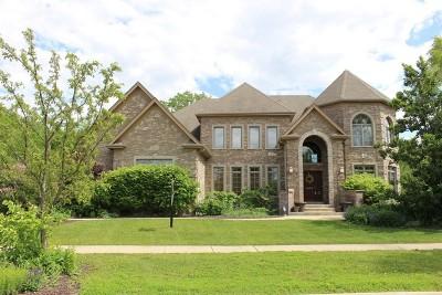 Batavia Single Family Home For Sale: 1038 Schonback Court