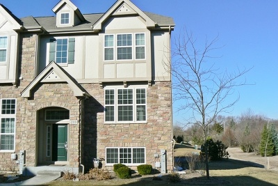 Carol Stream Condo/Townhouse For Sale: 299 Bennett Drive