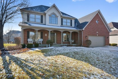 South Elgin Single Family Home For Sale: 764 Kateland Way