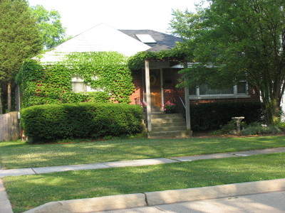 Western Springs Single Family Home For Sale: 3833 Grand Avenue