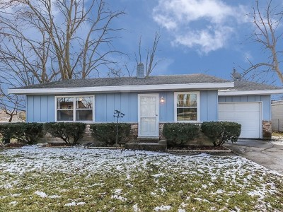 South Elgin Single Family Home For Sale: 123 Beck Avenue