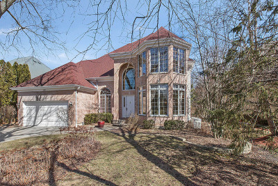 Palatine Single Family Home For Sale: 1499 North Trailside Court