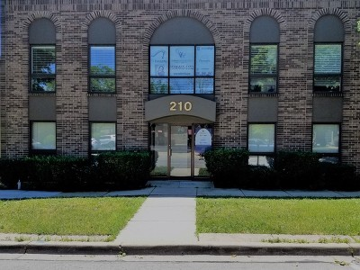 Wheaton Commercial For Sale: 210 West Willow Avenue