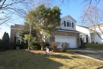 Lake In The Hills Single Family Home For Sale: 1175 Prides Run