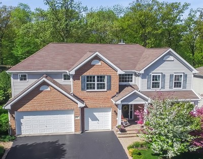 Bartlett IL Single Family Home Re-Activated: $499,000