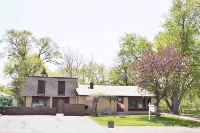 Batavia Single Family Home For Sale: 372 Orion Road