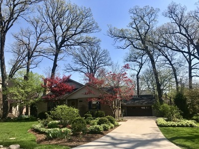 Naperville Single Family Home For Sale: 490 White Oak Drive