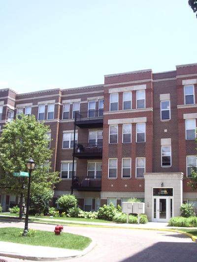 Rental For Rent: 1215 North Orleans Street #404