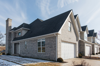 Western Springs Condo/Townhouse For Sale: 6009 Flagg Creek Lane