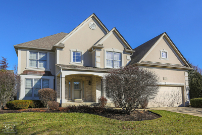 South Elgin Single Family Home Contingent: 633 Waterside Drive