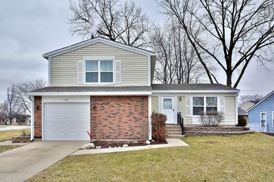 Bolingbrook Single Family Home For Sale: 1090 Towner Drive