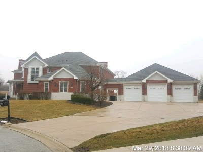 Monee Single Family Home For Sale: 7456 West Huntington Court