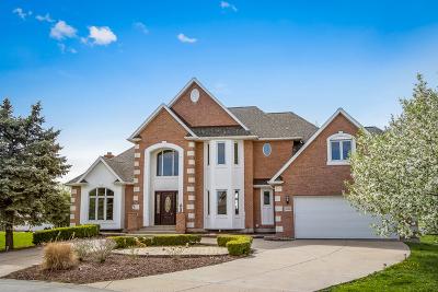 Aero Estates Single Family Home For Sale: 9s020 Stearman Drive