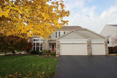 Bolingbrook Single Family Home For Sale: 1596 Trails End Lane